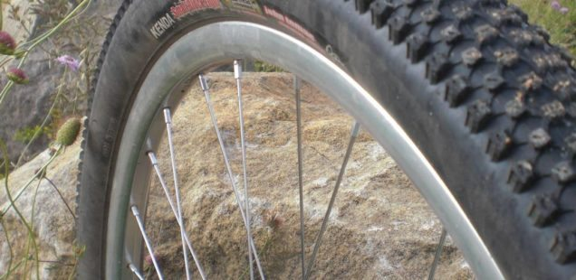 Spank Oozy Evo Wheel