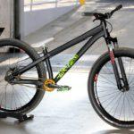 Specialized Stumppumper Custom Pump Track Bike