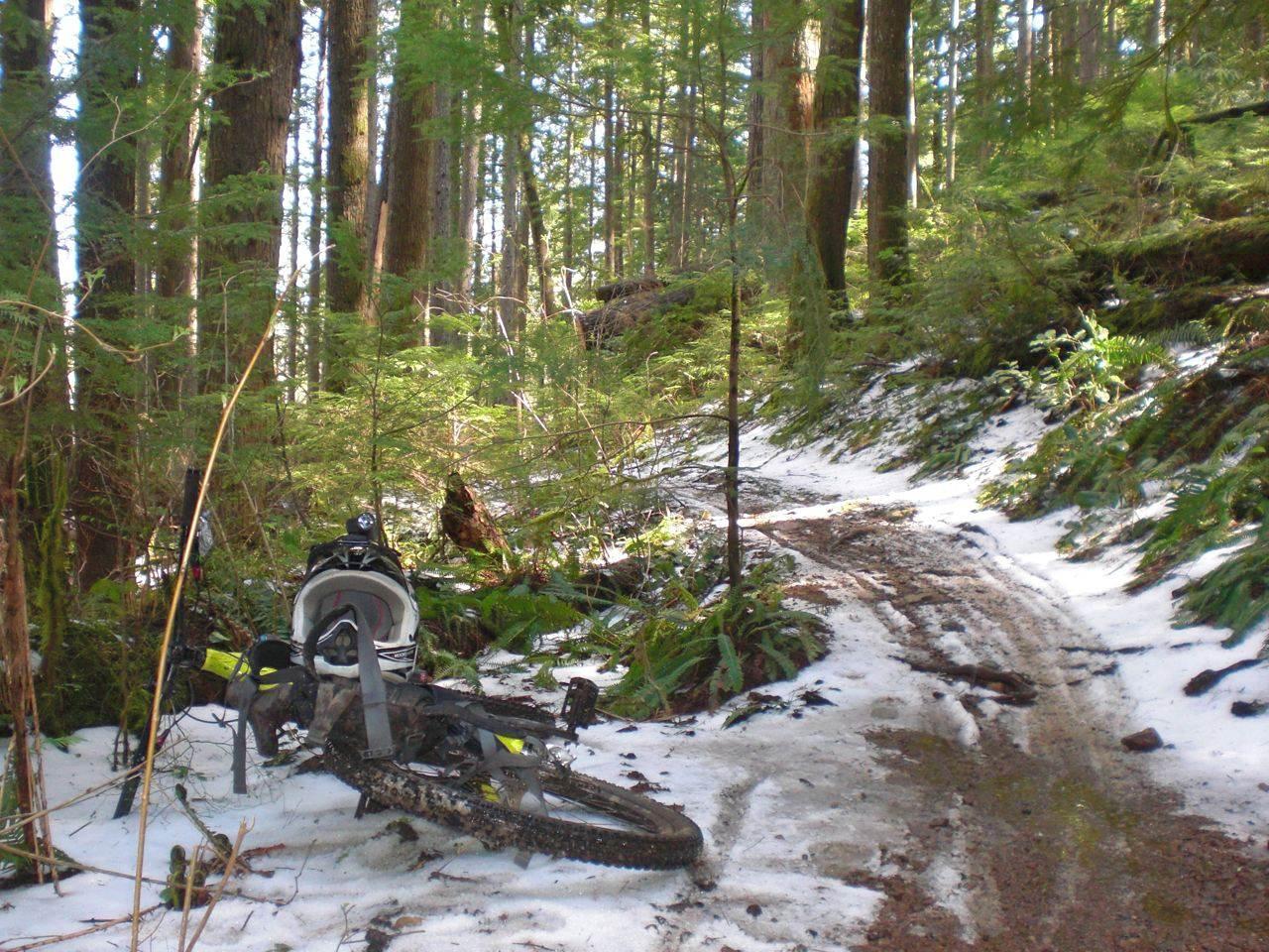 Cumberland Mountain Biking Trails