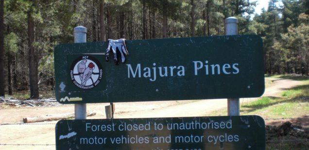 Majura Pines MTB Trail Head