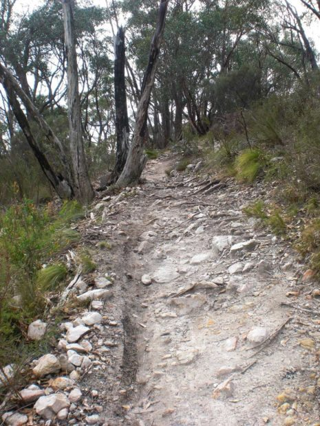 Welcome to Australia and our rocky rutted trails